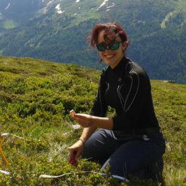 Journée de terrain #1 ORCHAMP : analyses génétiques