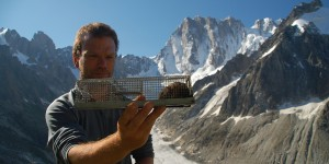 Suivi des micromammifères sur le massif du Mont-Blanc par Nigel Gilles Yoccoz © CREA Mont-Blanc
