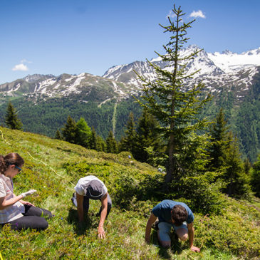 Missions de volontariat à Chamonix 2017