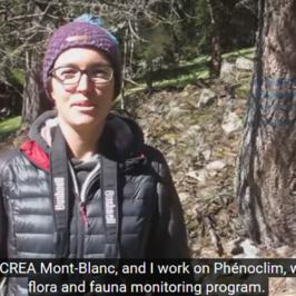 Vidéo de la saison d'observation à Vallorcine © CREA Mont-Blanc