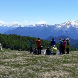 Formation des Accompagnateurs en Moyenne Montagne à Torgnon (IT) sur le site de suivi du changement climatique de l'ARPA © CREA Mont-Blanc