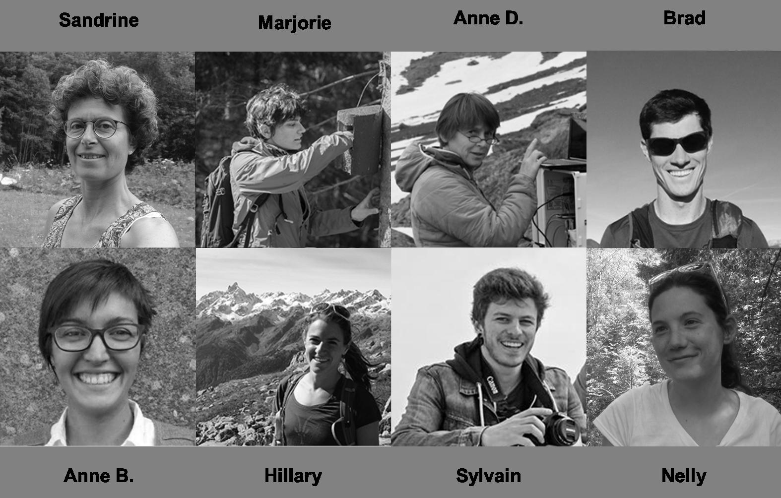 L'équipe du CREA Mont-Blanc qui participe aux suivis de la mésange noire © CREA Mont-Blanc