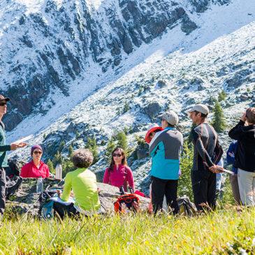 Volontaires 2017 : retour d'expérience