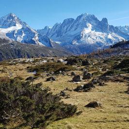Le site d'étude et de suivi du changement climatique du CREA Mont-Blanc à Loriaz © CREA Mont-Blanc