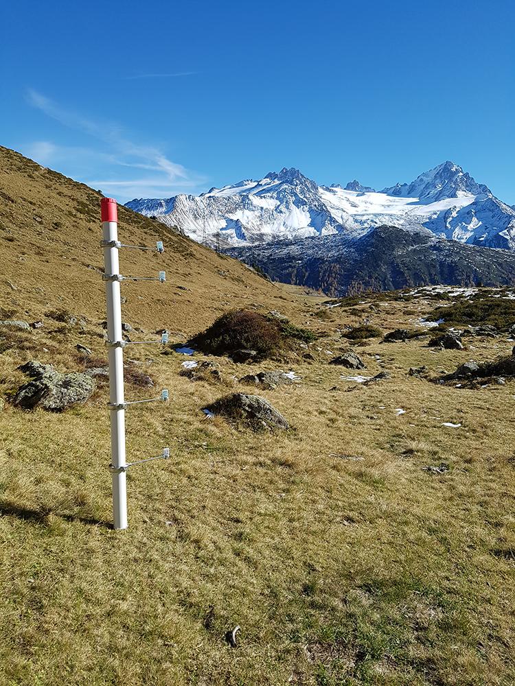 Le dispositif de mesure, avec des capteurs de température placé à intervalle de 30 cm ainsi qu'au sol et enterré à 10cm dans le sol © CREA Mont-Blanc