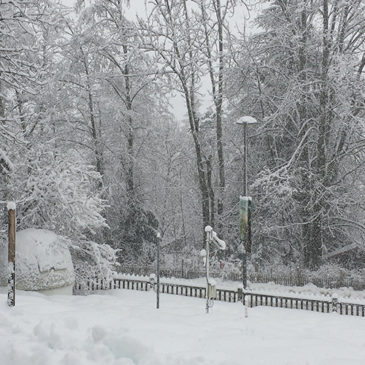 L'hiver et la neige arrivent en force à Chamonix