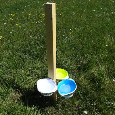 Coupelles colorées servant à capturer les abeilles sauvages © CVanReeth
