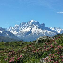 Le réchauffement climatique et son impact sur le manteau neigeux dans les Alpes