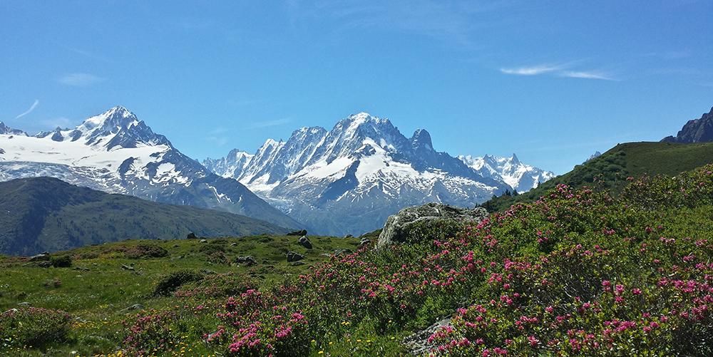 Évolution du manteau neigeux dans les Alpes © GKlein