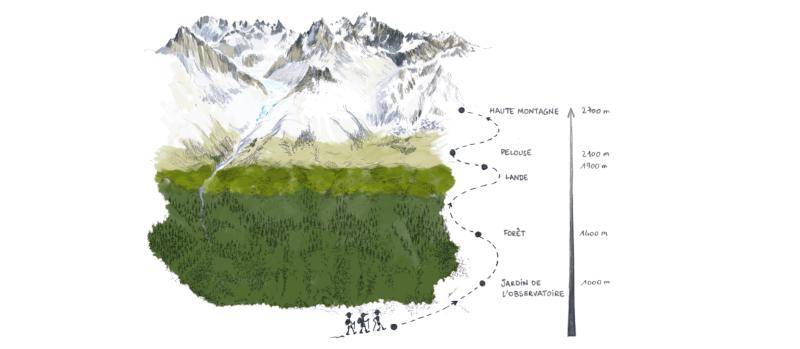 Unique: une visite virtuelle avec nous sur le massif du Mont-Blanc